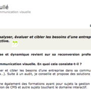 """Interview sur le métier de Consultante en communication visuelle pour le blog """"Les métiers du net"""""""